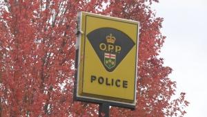 The OPP Detachment in Arnprior, Ont. (Dylan Dyson/CTV News Ottawa)