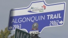 The Algonquin Trail in Pembroke, Ont. (Dylan Dyson/CTV News Ottawa)