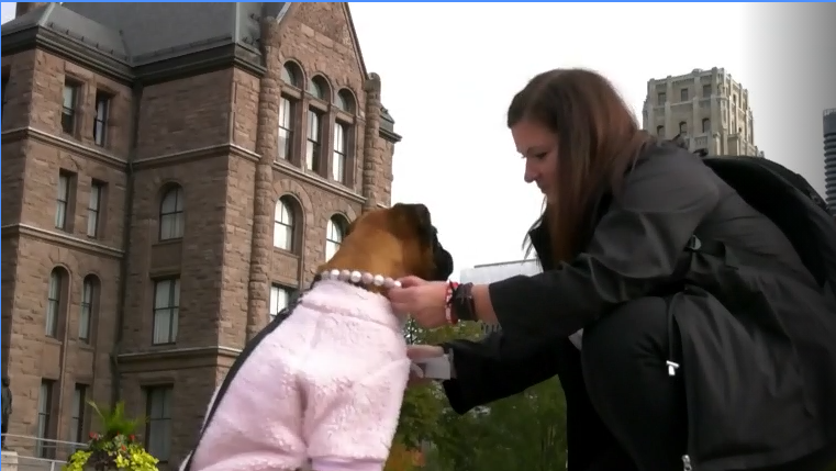 Dog owners push for changes to the dog owners liability act outside of Queen's Park on October 23, 2021.