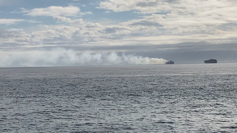 The coast guard was notified of the fire aboard the Zim Kingston around 11 a.m. Saturday. (CTV News)