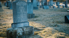 A grave in a cemetery is seen in this stock image (Pexels/Brett Sayles)