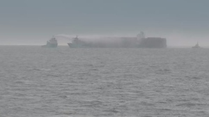 A screenshot of a live webcam showing the M/V Zim Kingston cargo ship on Sunday, Oct. 23 at 12 p.m. PST. (BigWaveDave.ca)