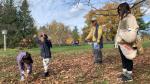 Enjoying the fall leaves at the Mackenzie King Estate. Oct. 24, 2021. (Jackie Perez/CTV News Ottawa)