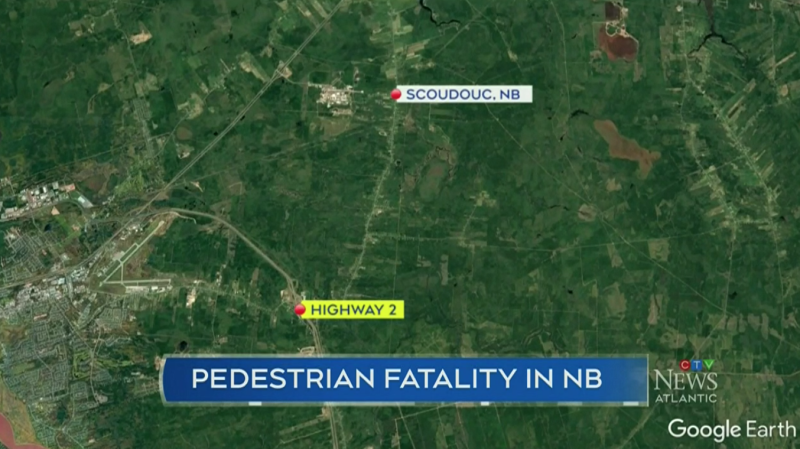 A 33-year-old man from Moncton, N.B. has died after a vehicle collided with a pedestrian on Friday night near Scoudouc, N.B.