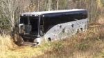 One dead after car, bus collide on N.B. highway