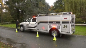 Firefighters in Comox, B.C., respond to a large tree that was downed by high winds Sunday, Oct. 24, 2021. (CTV News)