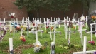 Crosses representing those who died by opioid overdose in Sudbury. Oct. 24/21 (Molly Frommer/CTV Northern Ontario)
