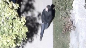 South Simcoe Police release images of a suspect in connection with sexual offences in Innisfil, Ont. (Supplied)