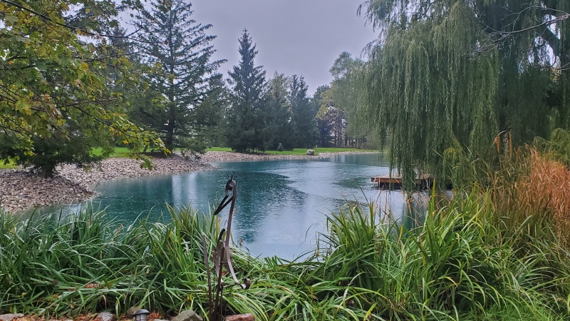 A pond in Centralia, Ont. (Source: Colleen Reymer)