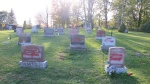 Ontario Provincial Police say up to 75 headstones at four cemeteries in the Trenton, Ont. area were vandalized over the weekend. (OPP)