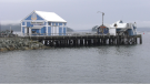 Beacon Avenue wharf in Sidney, B.C. as seen on October 22, 2021. (CTV News)