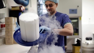 In this Tuesday, May 15, 2018, photo, scientist Fabrice De Bond opens the lid of a cryotank containing donor sperm samples in a lab at Melbourne IVF in Melbourne, Australia. (AP Photo/Wong Maye-E)