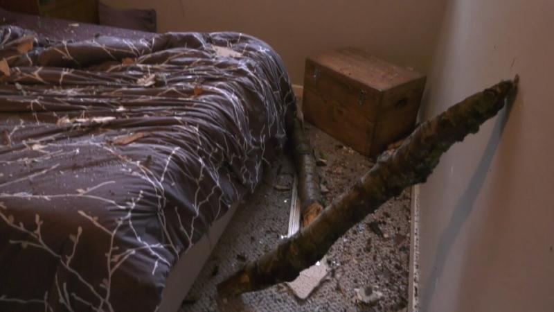 CTV National News: Bomb cyclone in B.C.