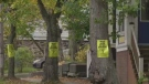 A group from south end Halifax gathered on Tuesday to send a message to the city to put a stop to any plans to remove mature trees in their neighbourhood in order to clear a path for bike lanes.