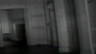 An object described by paranormal investigators as an arm is seen in the centre of the frame in a still image from video from Coldspotters Paranormal.