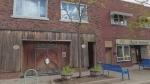 Ford City BIA plans to help revitalize Drouillard
