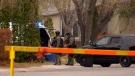 Saskatoon police were on scene when a Regina murder suspect was arrested/ (Chad Hills / CTV News)