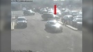 Police seek information about a hit-and-run at West Edmonton Mall. (Credit: EPS)