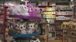 Consumers seek goods in short supply