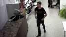 A surveillance photo of the man police believe to be connected to a car theft at an Orangeville Laundromat on Monday, October 25, 2021 (Courtesy: OPP)