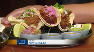 Learn about the menu items and an upcoming fundraiser at Agave Authentic Mexican Grill.