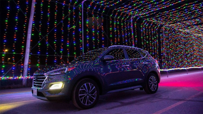An image from Magic of Lights is seen in this image. (Source: Woodlo Productions Inc. and FunGuys Events)