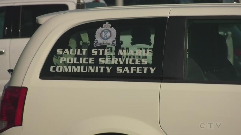 Update on the Sault's IMET