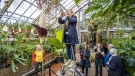 """A woman takes pictures of the flowering """"penis plant"""" in the tropical greenhouses of the Leiden Hortus Botanicus on October 22. (Lex Van Lieshout/ANP/AFP/Getty Images via CNN)"""