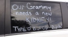The message written on Jenny Raspberry's van, hoping to find a kidney for her mother. Oct. 28, 2021. (Scott Miller / CTV News)