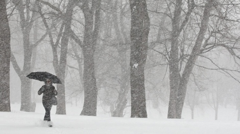 A woman makes her way through a park during a snowstorm expected to dump some 25 centimetres of snow in Montreal, Wednesday, Dec. 9, 2009. (Paul Chiasson / THE CANADIAN PRESS)