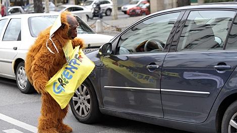 A Greenpeace activist dressed as an ape takes part in a protest on the occasion of the ongoing UN climate change conference being held in Copenhagen, in the streets of Geneva, Switzerland, Saturday, Dec. 12, 2009. (AP Keystone / Martial Trezzini)