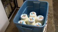 Raw milk is seen at the Home on the Range dairy in Chilliwack, B.C. Jan. 22, 2010.