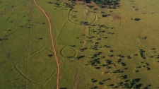 Some of the 260 ancient earthworks located in the Amazon basin by archeologist Denise Schaan and her colleagues. (Courtesy of Denise Schaan)