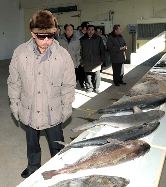 North Korean leader Kim Jong Il looks at fishes during his visit to Wonphyong Taehung Fishery Station in Kumya County, South Hamgyong Province, North Korea in this undated photo released in Tokyo, Thursday, Feb. 4, 2010. (AP / Korean Central News Agency via Korea News Service)