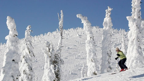 This Feb. 18, 2008 photo released by Brian Schott shows a skier moving through the signature snow ghosts of Hellroaring Basin at Whitefish Mountain Resort in Montana with ski tracks on Hellroaring Peak in the distance. Whitefish Mountain Resort is located west of Glacier National Park in the Flathead National Forest. (AP Photo/Brian Schott)