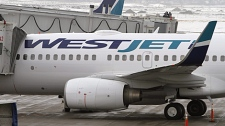 Westjet Airlines planes sit on the tarmac at Calgary Airport on Tuesday, Feb. 16, 2010. (THE CANADIAN PRESS/Larry MacDougal)