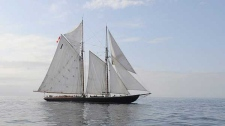 The schooner Bluenose II, of Lunenburg, Nova Scotia, Canada, is seen on Friday, Aug. 29, 2008 off Gloucester, Mass. (AP / Lisa Poole)