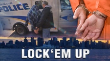 The most pervasive crimes in Canada are those involving theft property, costing the economy billions a year.