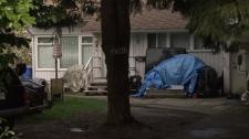 The Richmond home where 17-year-old Martha Jackson Hernandez was found dead. March 25, 2010. (CTV)