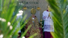 Pope Benedict XVI is framed by palm tree branches during an open-air Palm Sunday mass in St. Peter's square at the Vatican, Sunday, March 28, 2010. (AP / Andrew Medichini)