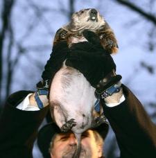John Griffith holds up Punxsutawney Phill, the weather predicting groundhog, on Friday in Punxsutawney, Pa. (AP / Carolyn Kaster)