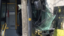 A TransLink bus crashed into the Newton Wave Pool in Surrey, B.C., on Sunday, April 11, 2010. (CTV)