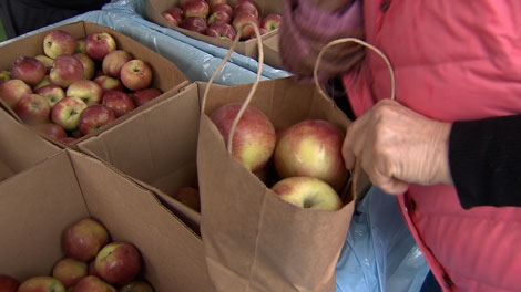 In the Fraser Valley Saturday, shoppers took home bags of apples at just 12 cents a pound. But this sweet deal carried a serious message about the state of B.C.'s apple industry.