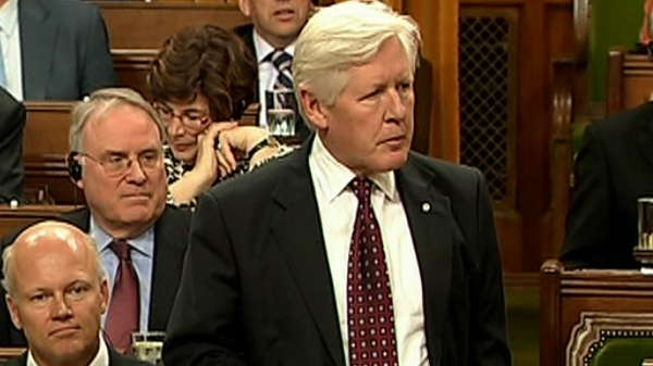 Liberal MP Bob Rae stands during question period in the House of Commons, Tuesday, May 4, 2010.