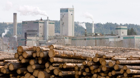 Logs are piled up at West Fraser Timber in Quesnel, B.C., in this April 21, 2009 photo. West Fraser Timber Co. Ltd. says the worst is over for the forestry company after it reported its first quarterly profit in two years. (THE CANADIAN PRESS/Jonathan Hayward)