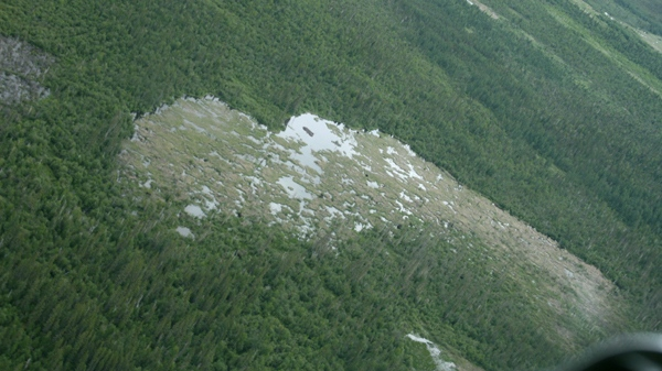 The massive structure captured international attention this week, more than two years after it was first discovered by an Ottawa ecologist surveying the area through satellite imagery. (Photo credit: Wood Buffalo National Park of Canada, S. Anderson)