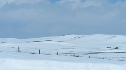 Cardston snow