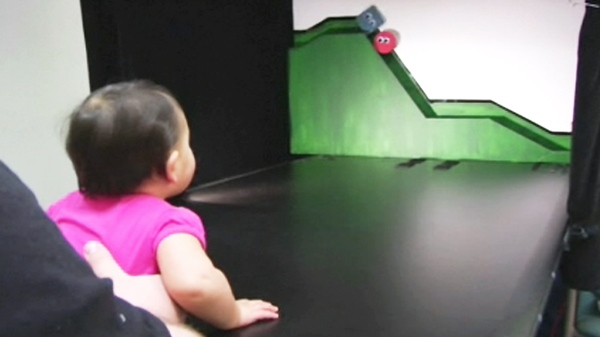 In an experiment, a baby watches a play in which a red ball tries to climb a hill, while a blue square tries to push the ball down.