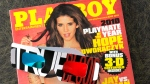 A pair of 3-D glasses are seen across the cover of the June 2010 edition of Playboy magazine on Monday, May 10, 2010. (AP / M. Spencer Green)