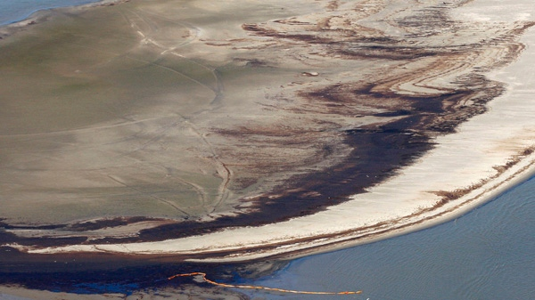 Oil is seen on an island near the South Pass of the Mississippi River on the coast of Louisiana, Friday, May 21, 2010. (AP / Patrick Semansky)